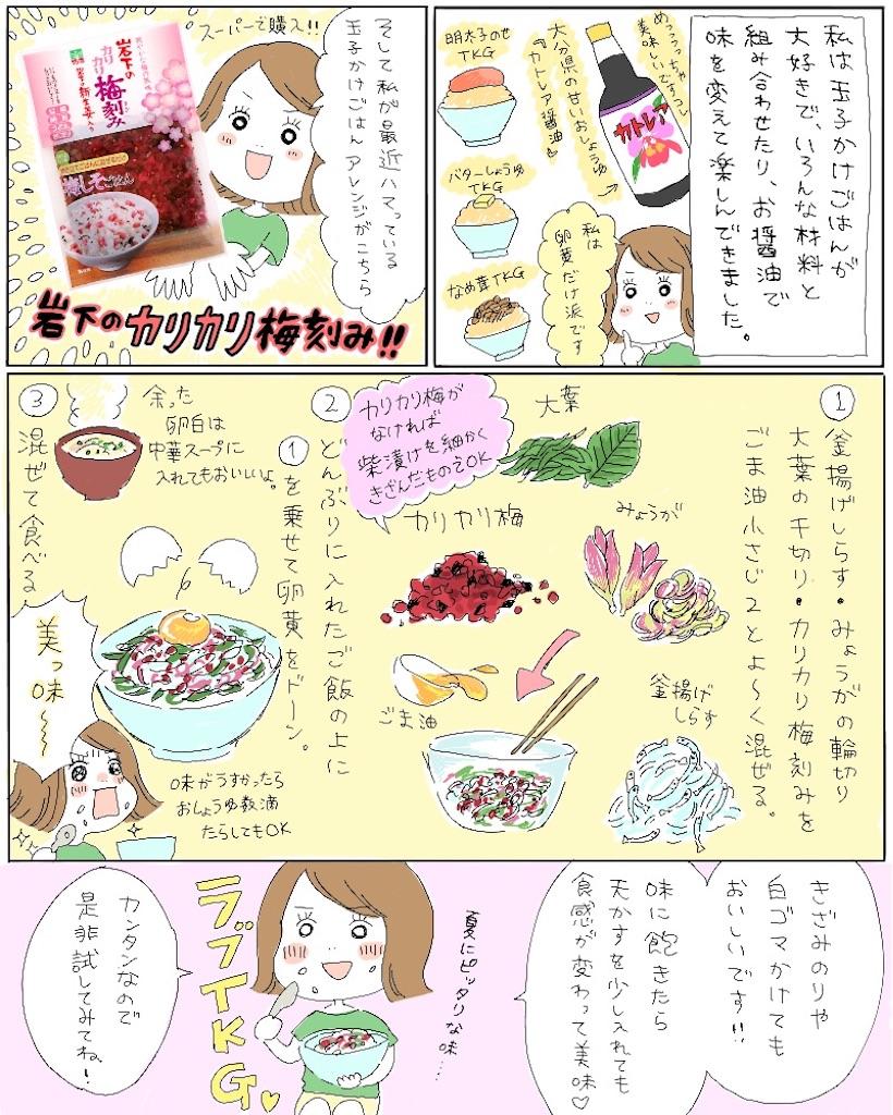 f:id:i-mitsuko:20170722184400j:image