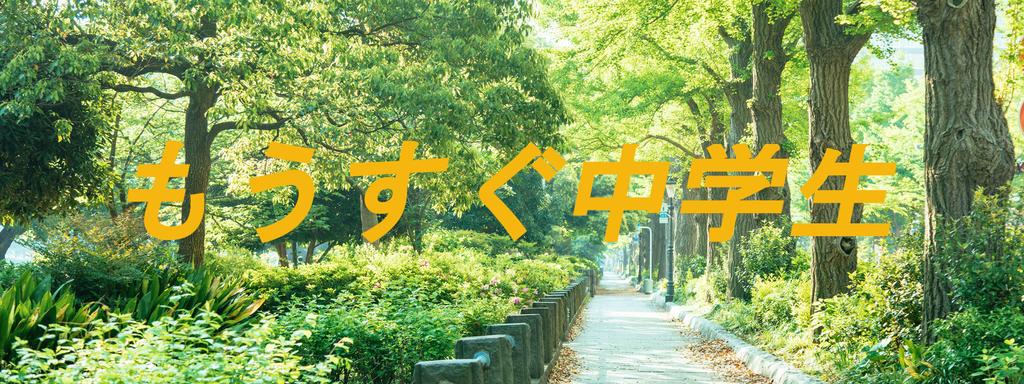 f:id:i-shiika:20181225204516j:plain