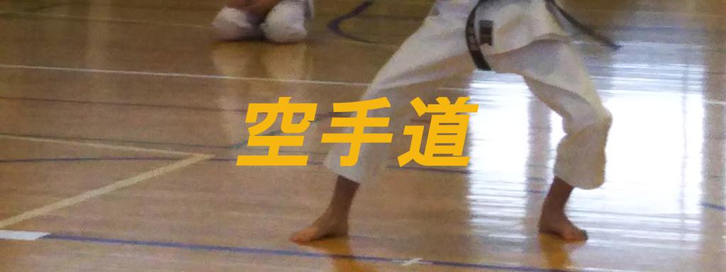 f:id:i-shiika:20181225210145j:plain