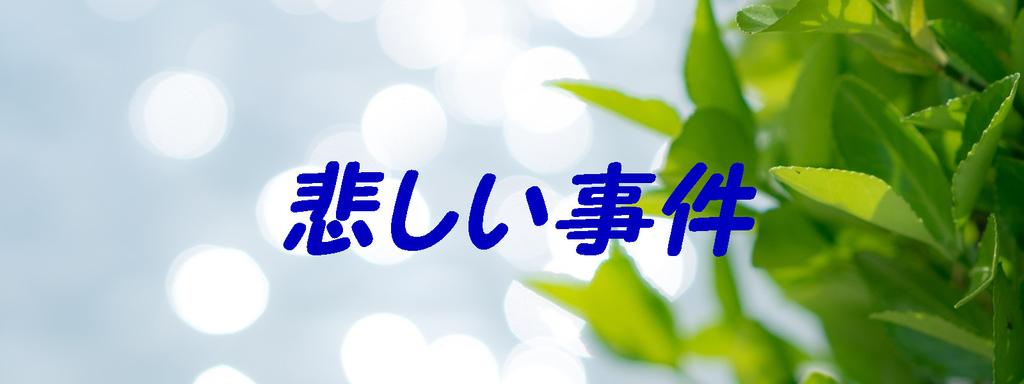 f:id:i-shiika:20190201164833j:plain