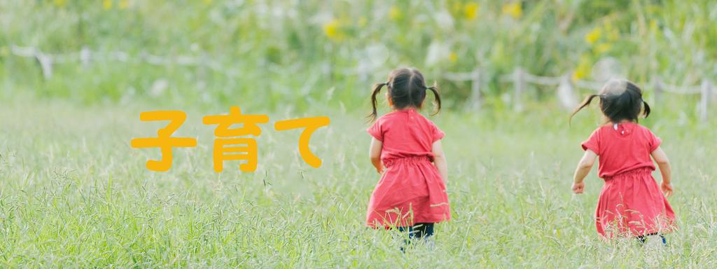 f:id:i-shiika:20190206142953j:plain