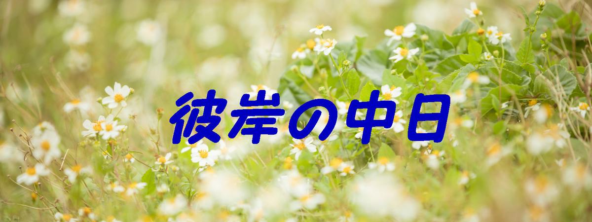 f:id:i-shiika:20190321170500j:plain