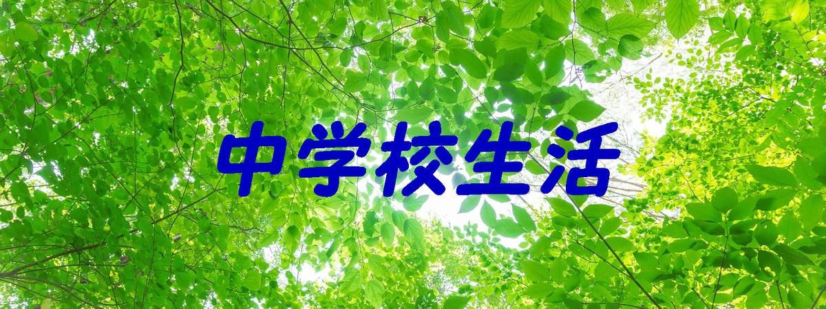 f:id:i-shiika:20190420160359j:plain