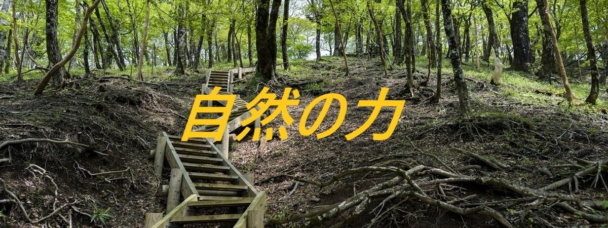 f:id:i-shiika:20190521155936j:plain