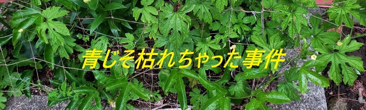 f:id:i-shiika:20190621204007j:plain