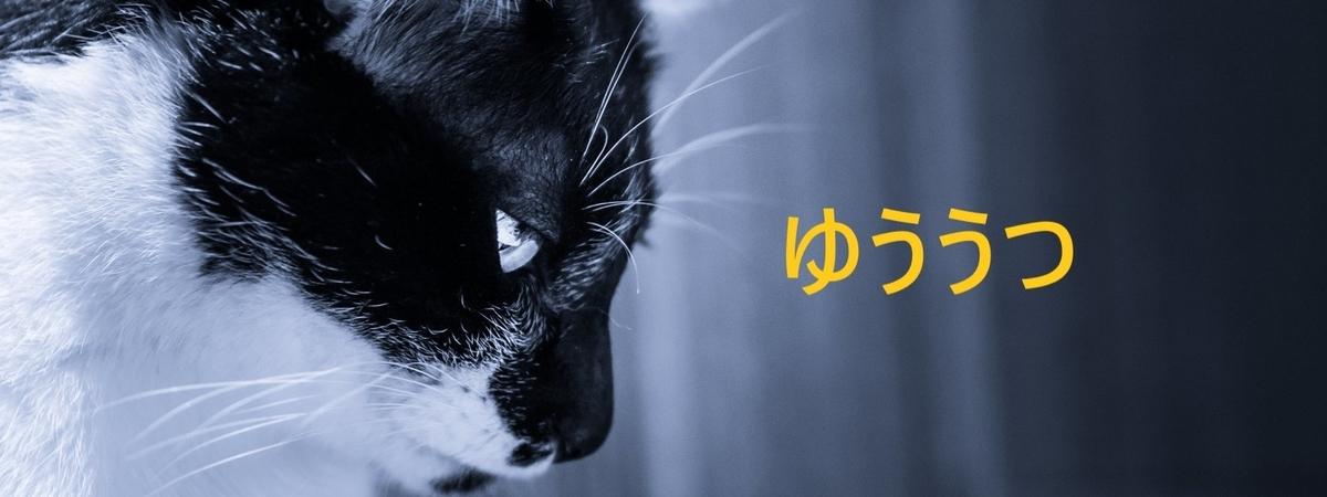 f:id:i-shiika:20200226175201j:plain