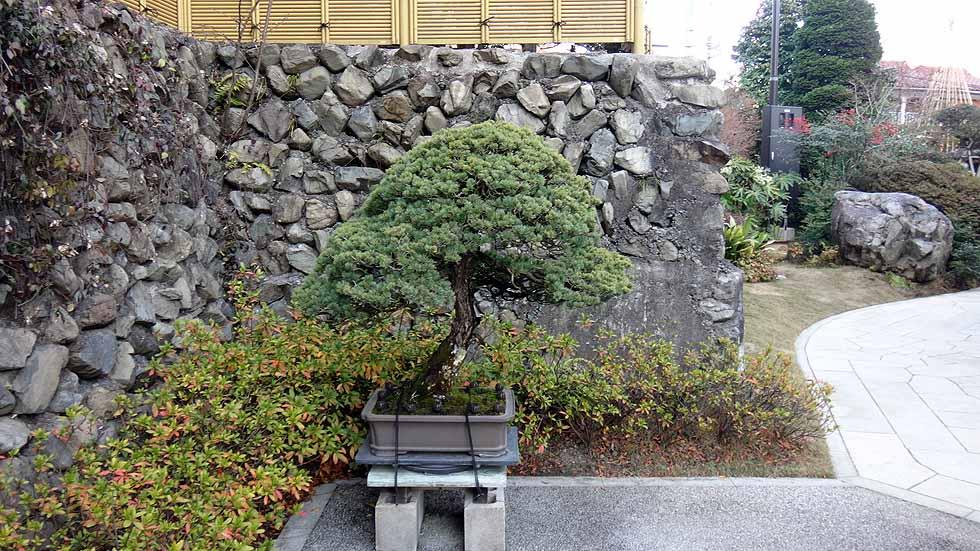 f:id:i-shizukichi:20161214133641j:plain