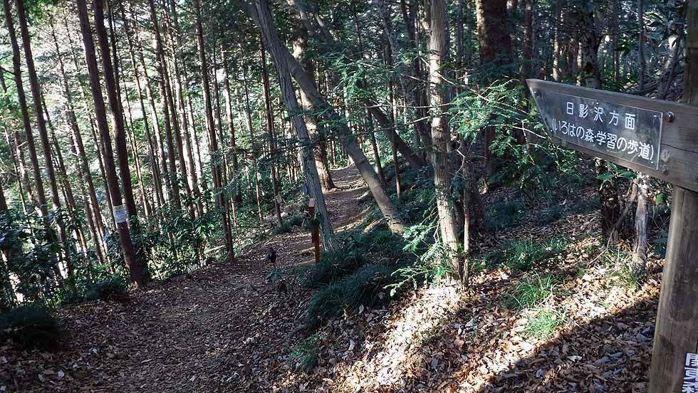 f:id:i-shizukichi:20161218192423j:plain