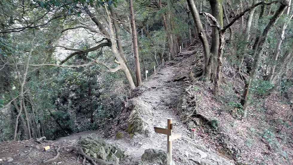 f:id:i-shizukichi:20161229072643j:plain