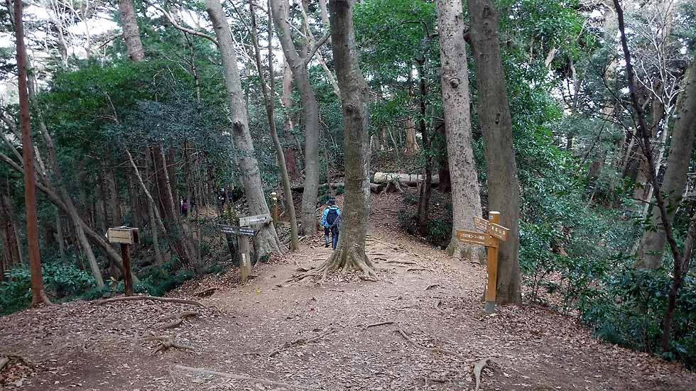 f:id:i-shizukichi:20170103165653j:plain