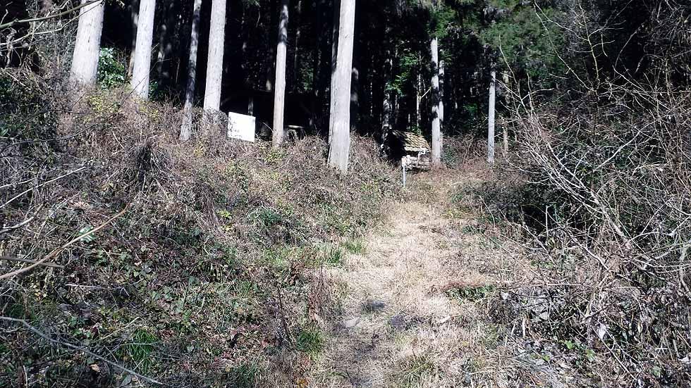 f:id:i-shizukichi:20170104204209j:plain