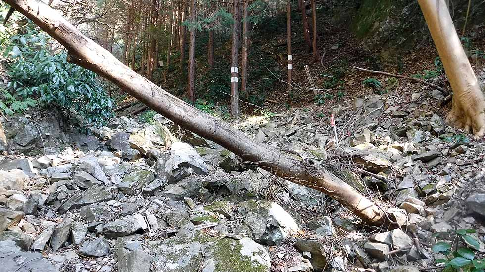 f:id:i-shizukichi:20170104204425j:plain