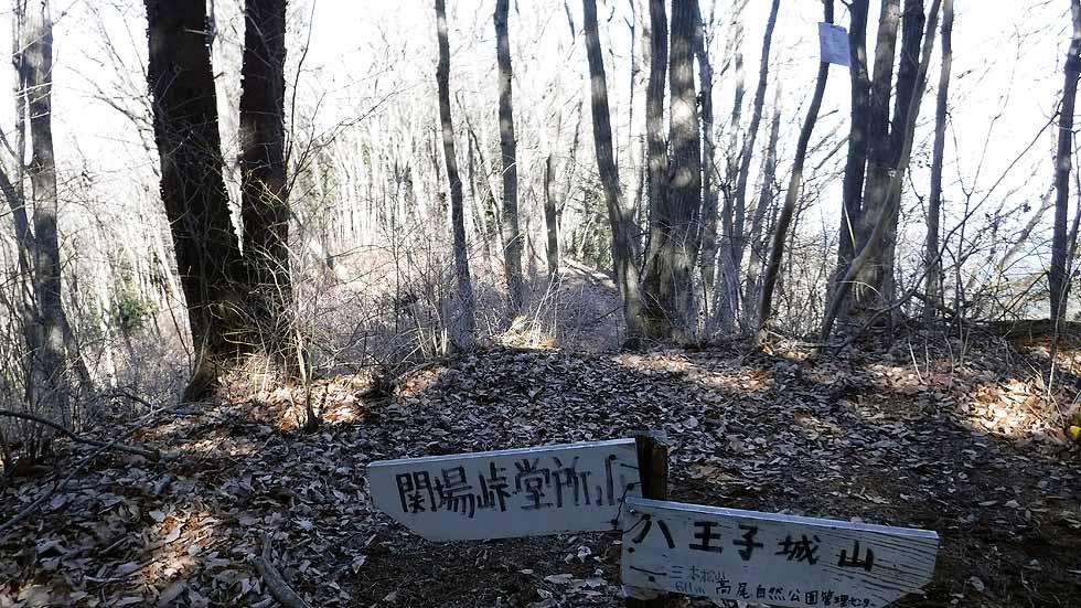 f:id:i-shizukichi:20170106093544j:plain