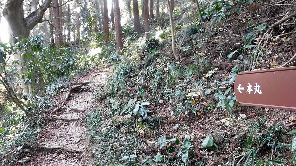 f:id:i-shizukichi:20170107181937j:plain