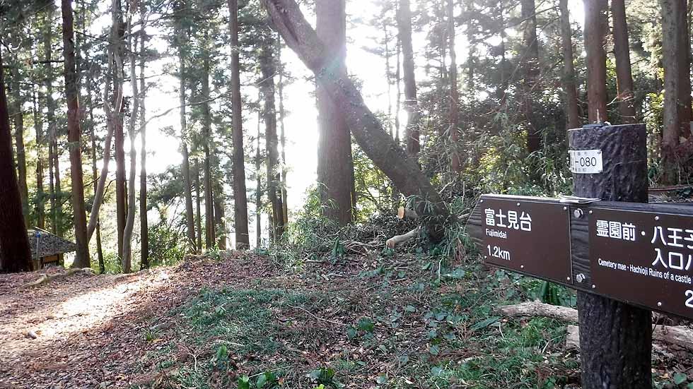 f:id:i-shizukichi:20170107183912j:plain