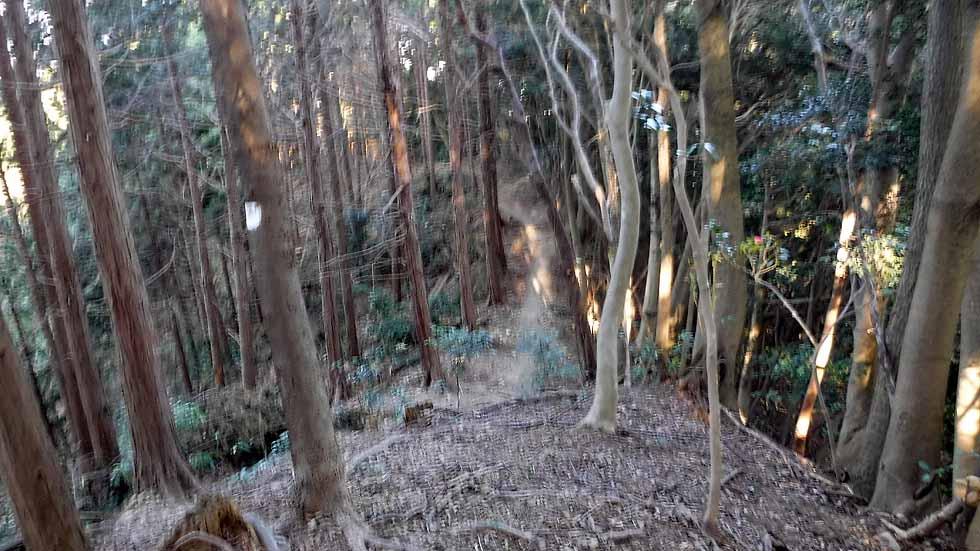 f:id:i-shizukichi:20170107184116j:plain
