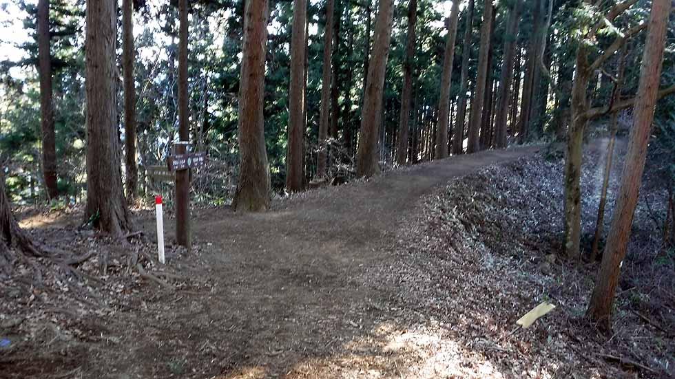f:id:i-shizukichi:20170112183336j:plain