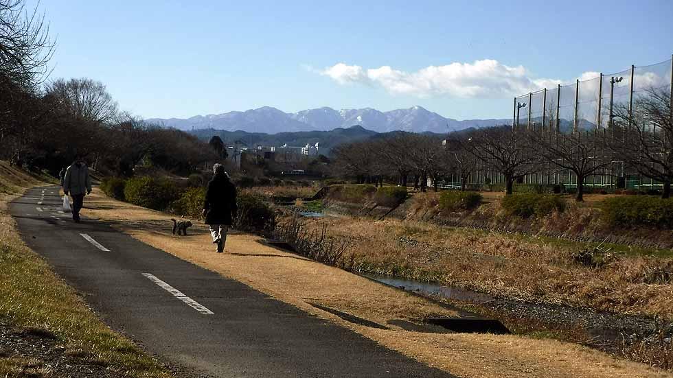 f:id:i-shizukichi:20170113180304j:plain