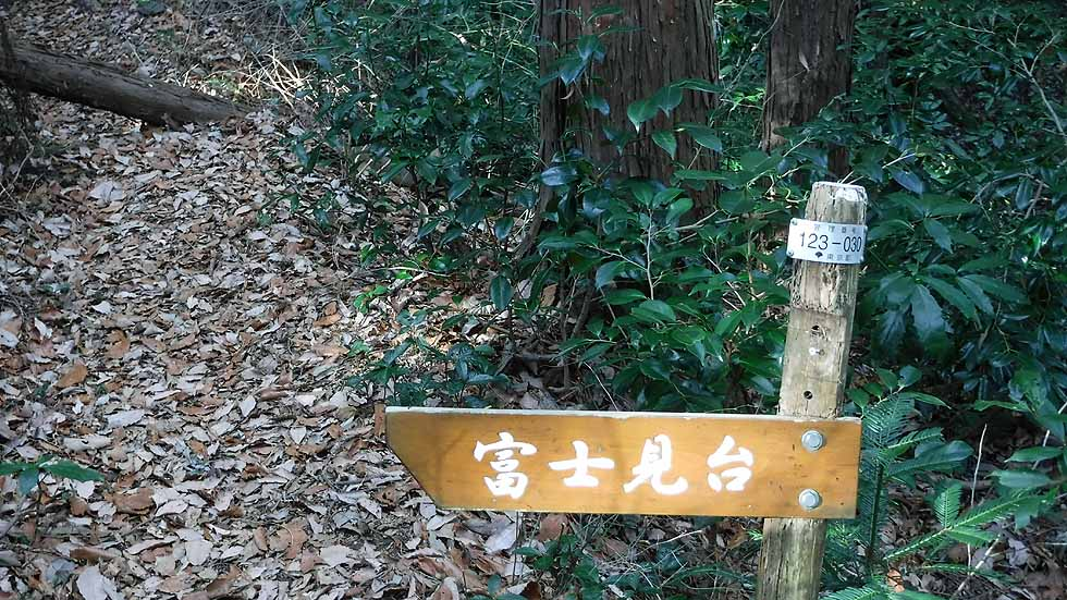 f:id:i-shizukichi:20170113183739j:plain