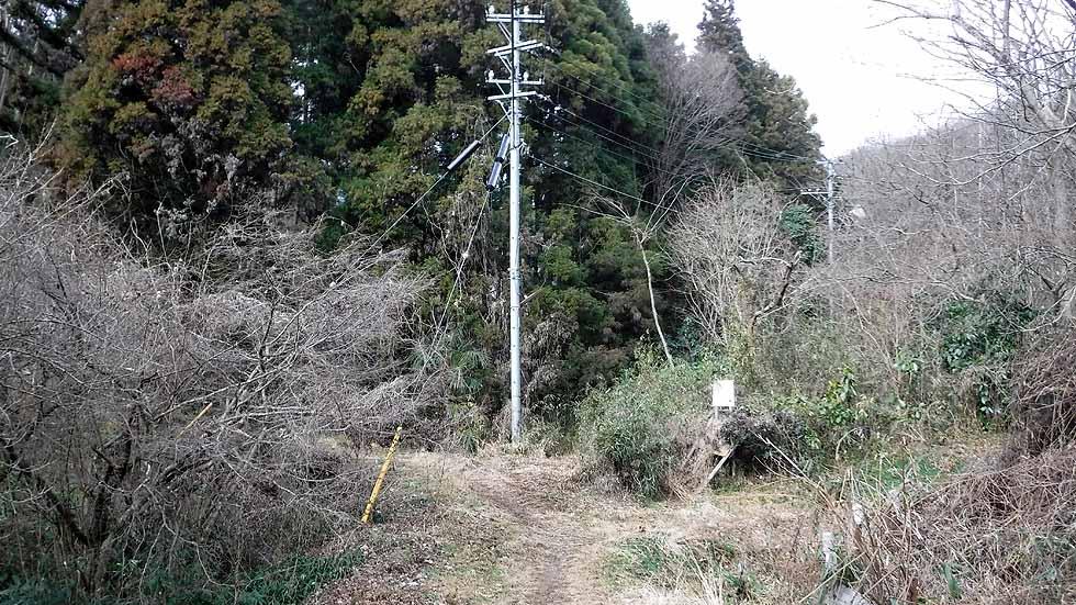 f:id:i-shizukichi:20170115185718j:plain