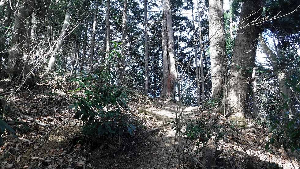 f:id:i-shizukichi:20170115193734j:plain