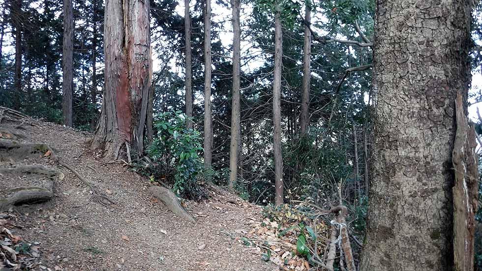 f:id:i-shizukichi:20170115193835j:plain
