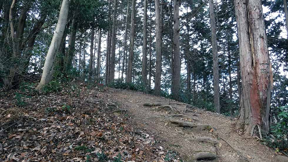 f:id:i-shizukichi:20170115194222j:plain