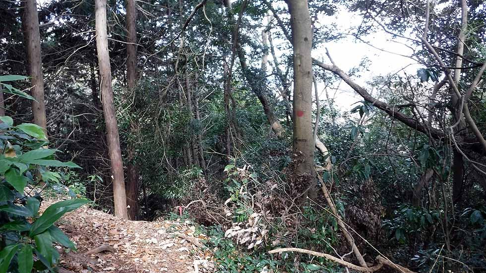 f:id:i-shizukichi:20170115194316j:plain