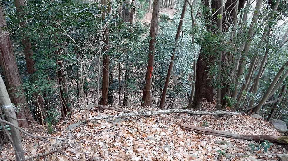 f:id:i-shizukichi:20170115194745j:plain