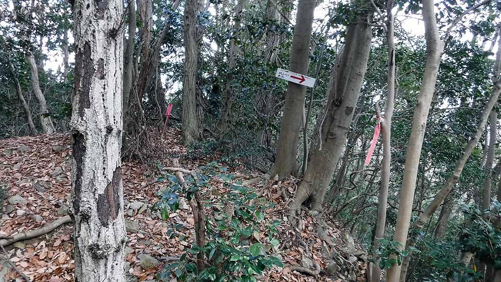 f:id:i-shizukichi:20170115194826j:plain