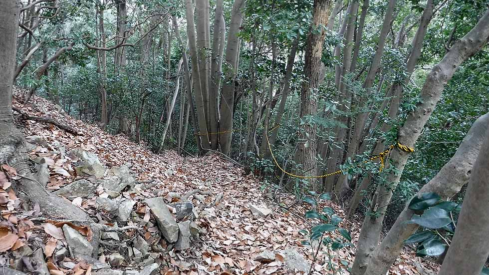 f:id:i-shizukichi:20170115194929j:plain