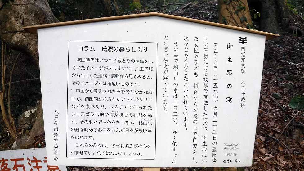 f:id:i-shizukichi:20170115203620j:plain