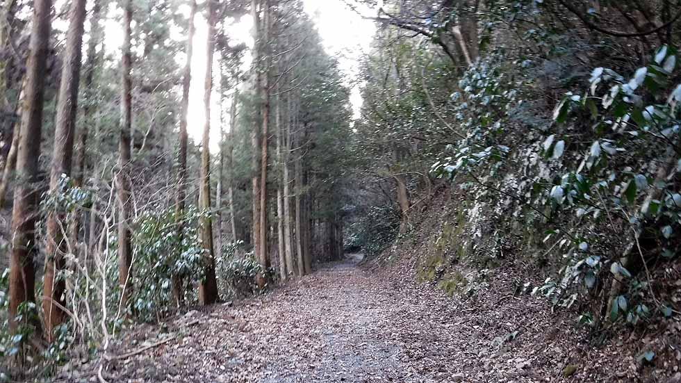 f:id:i-shizukichi:20170115204040j:plain