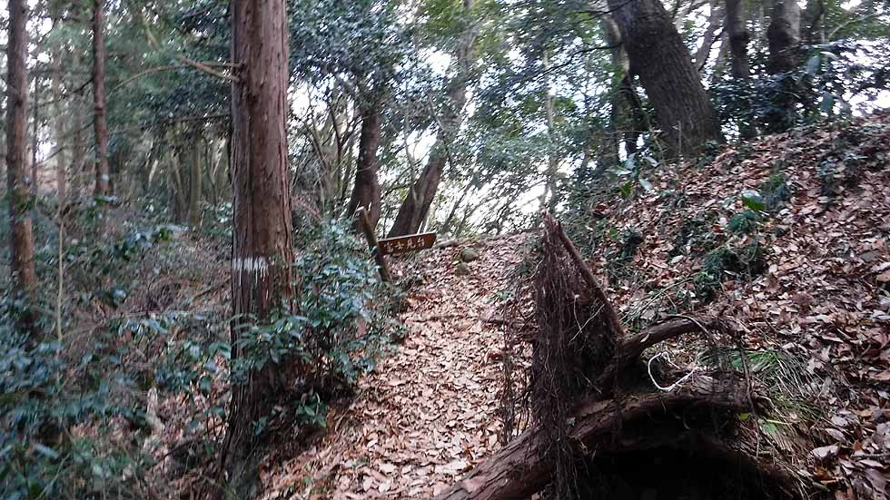 f:id:i-shizukichi:20170115204547j:plain