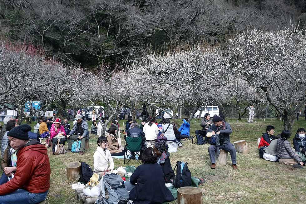 f:id:i-shizukichi:20170311182056j:plain