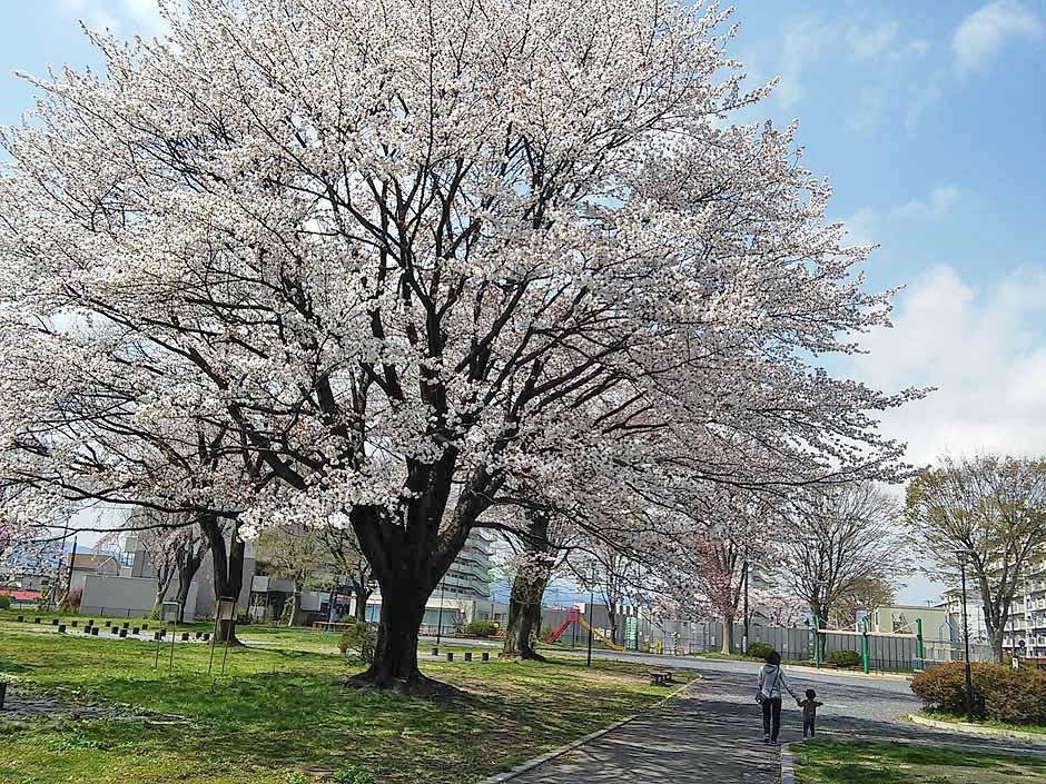 f:id:i-shizukichi:20170413153114j:plain