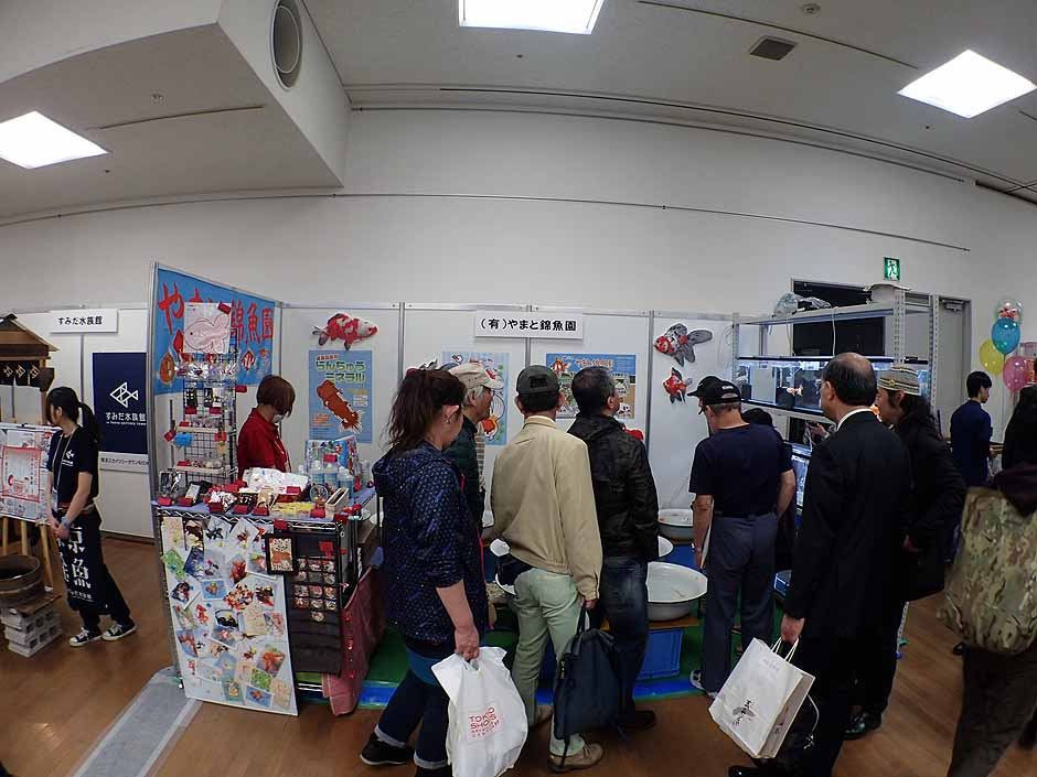 f:id:i-shizukichi:20170416113427j:plain