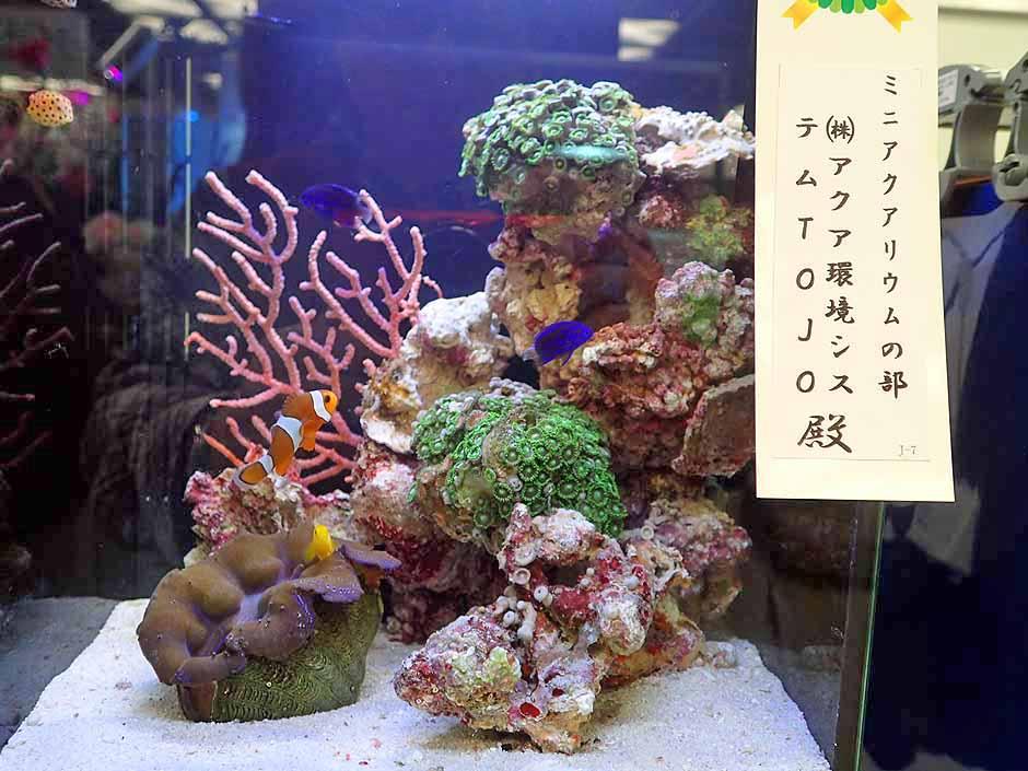 f:id:i-shizukichi:20170416113628j:plain
