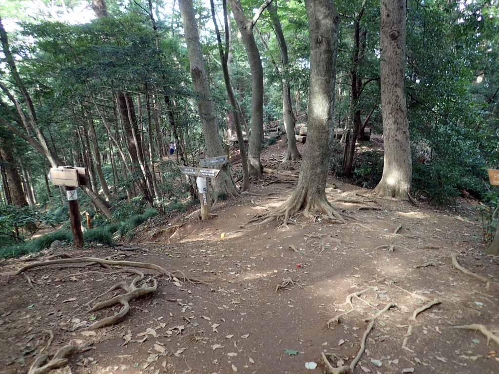 f:id:i-shizukichi:20170913223101j:plain