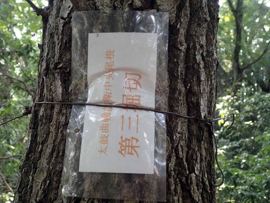 f:id:i-shizukichi:20170926205540j:plain