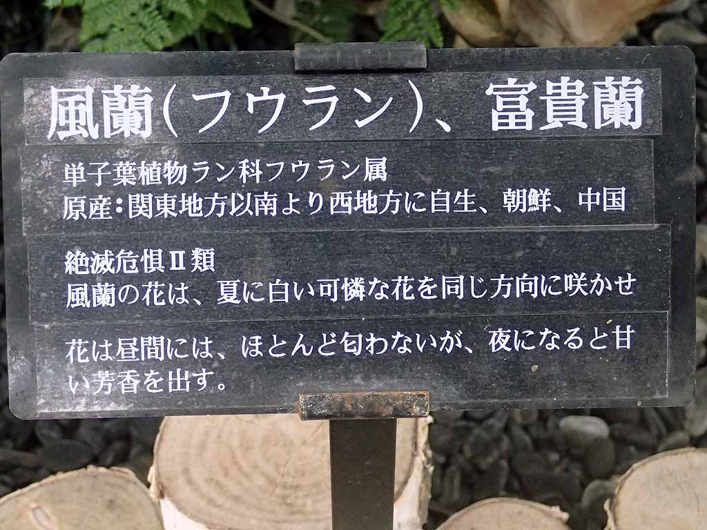 f:id:i-shizukichi:20171025193436j:plain