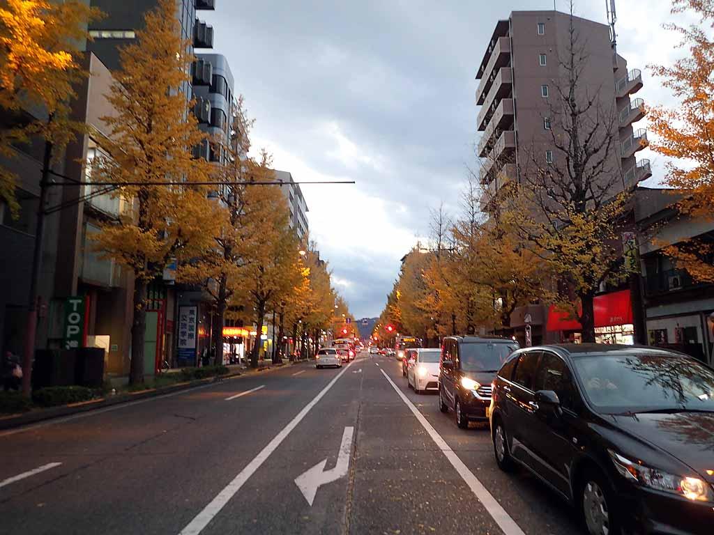 f:id:i-shizukichi:20171116184414j:plain