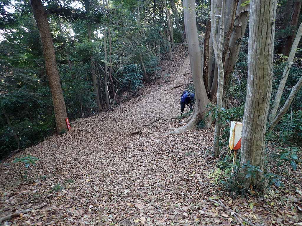 f:id:i-shizukichi:20171125184529j:plain