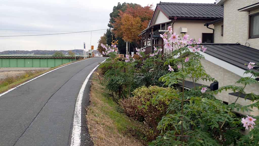 f:id:i-shizukichi:20171128002058j:plain