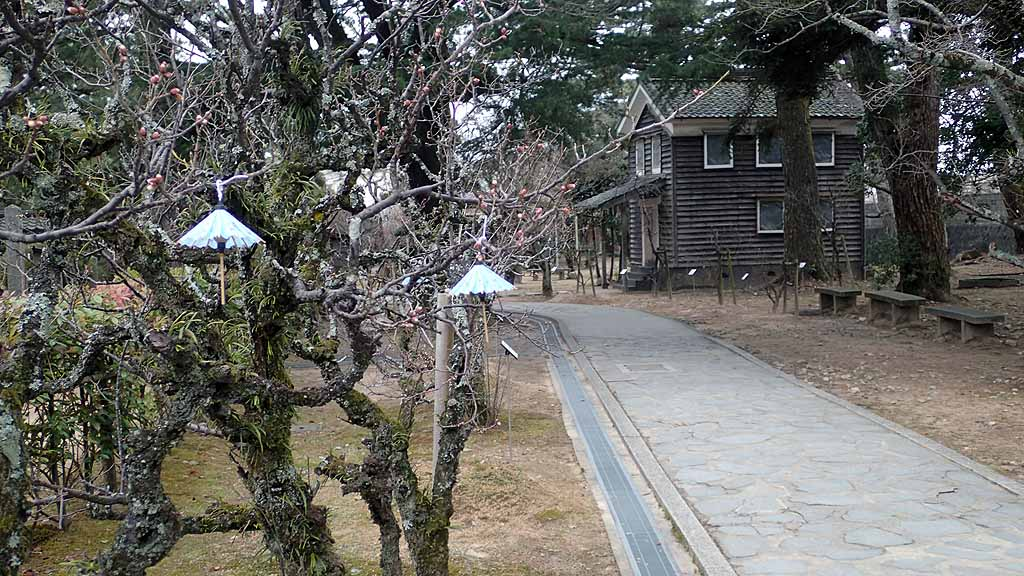 f:id:i-shizukichi:20180206201631j:plain