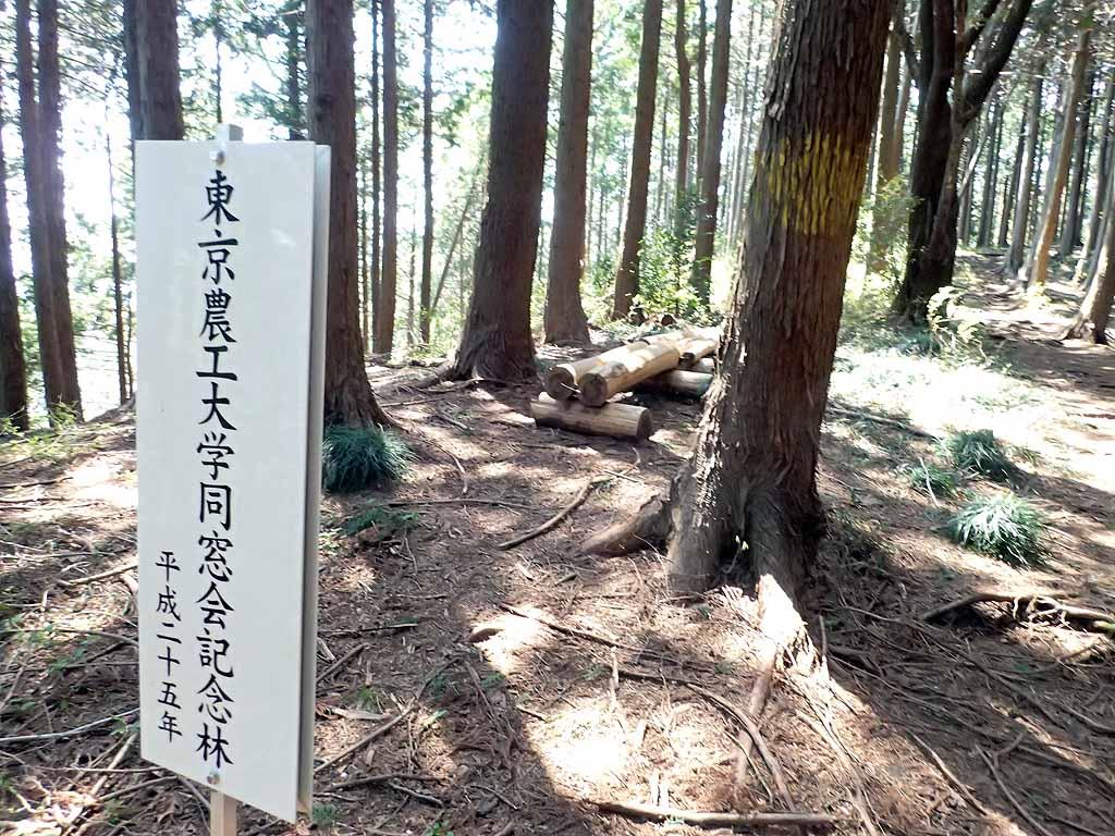 f:id:i-shizukichi:20180410194450j:plain