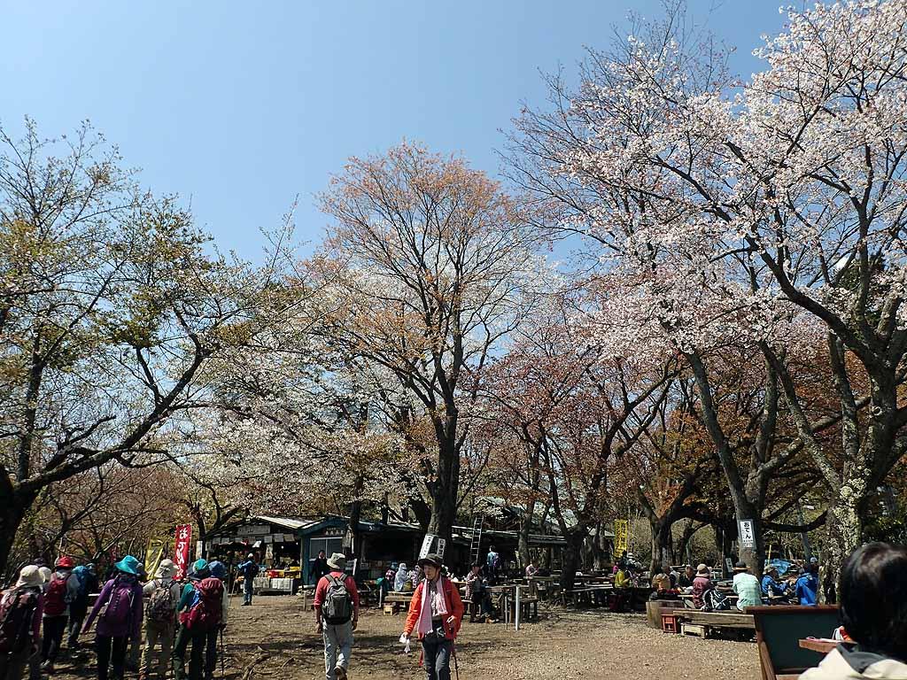 f:id:i-shizukichi:20180410195212j:plain