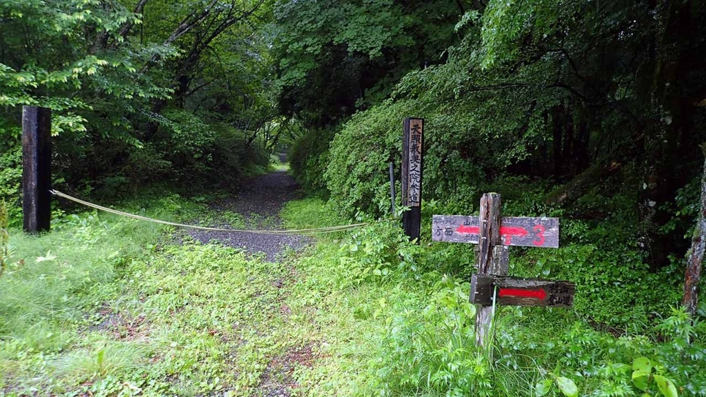 f:id:i-shizukichi:20180621191832j:plain