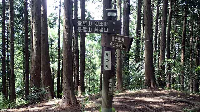 f:id:i-shizukichi:20180704145213j:plain