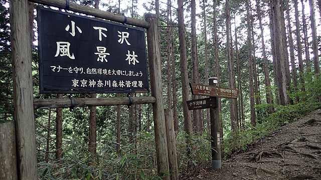 f:id:i-shizukichi:20180704150232j:plain